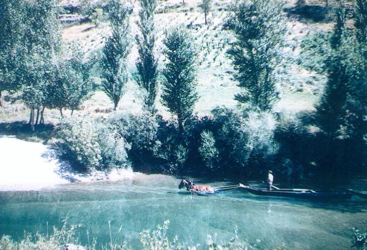 Un cheval tire une barque