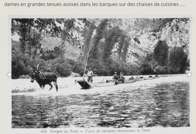 Un convoi de barques remonte le Tarn tiré par un cheval (2)